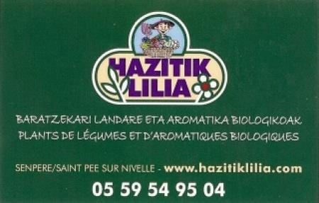 HAZITIK LILIA LEGUMES BIO